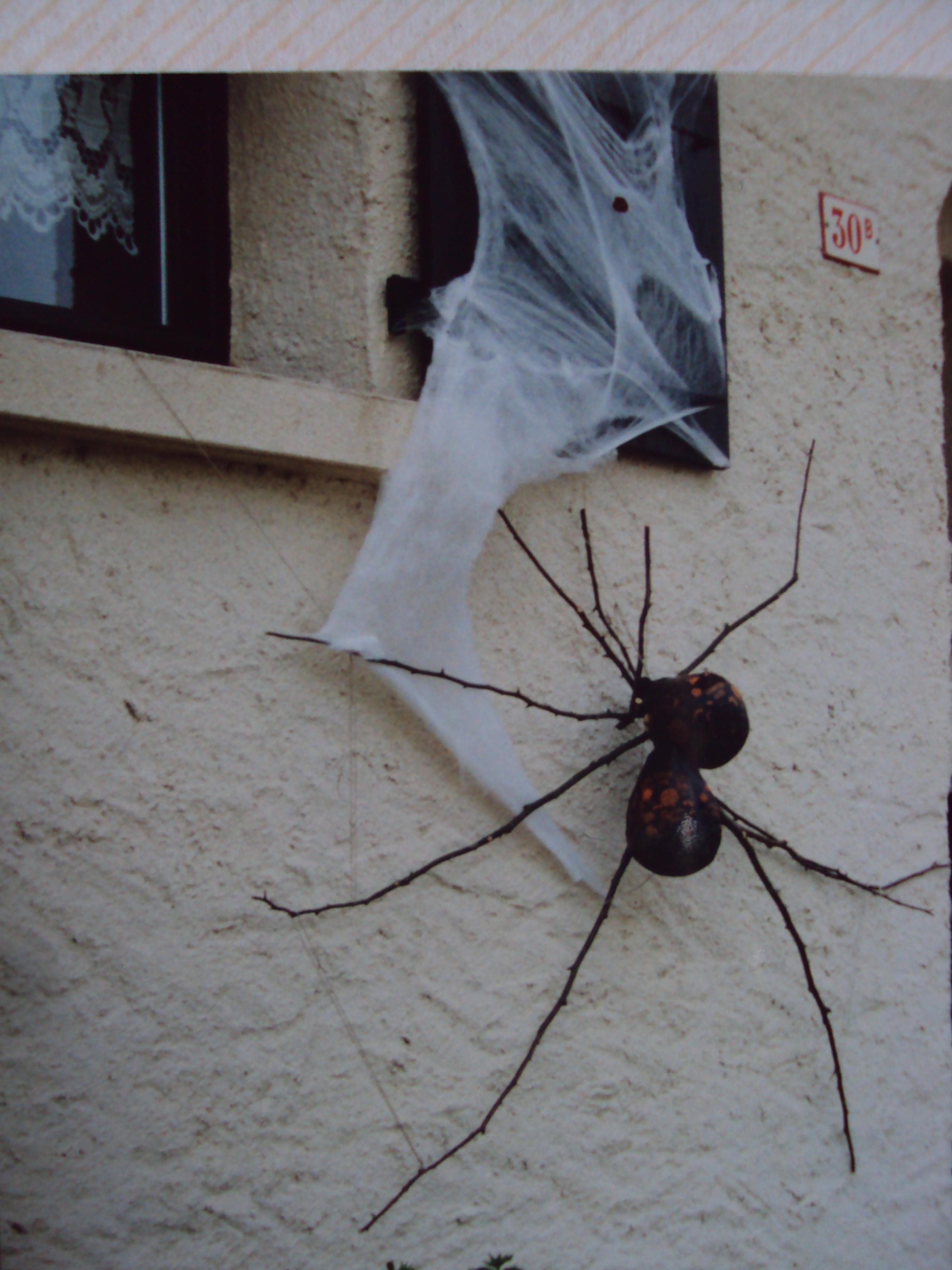 Nom de la création : Décoration de maison pour Halloween